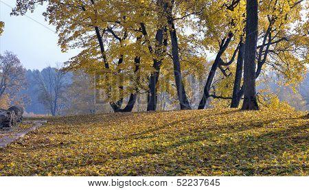 Radvila Palace Hill In Asveja Regional Park