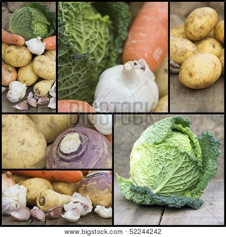 Compilation Collage Of Fresh Food With A Theme Of Winter Vegetables