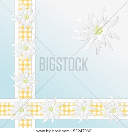 Decorative Checkered Pattern With Edelweiss As Background