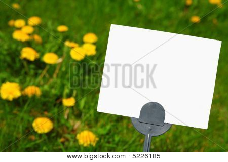 Blank Pesticide Lawn Sign