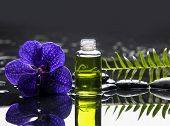 picture of fern  - Purple orchid with pebbles and massage oil  - JPG
