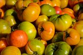 Heirloom Tomatoes Closeup At The Farmers Market