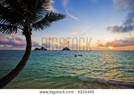 pacific sunrise at lanikai hawaii