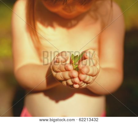 Little girl holding a green plant