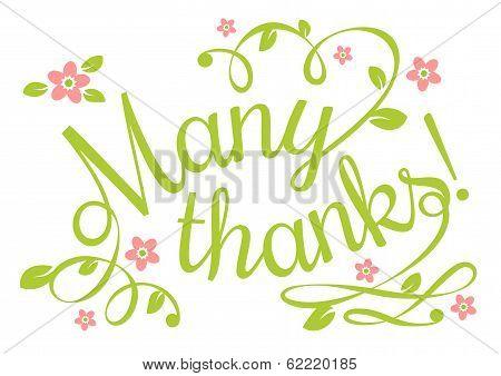 Many Thanks
