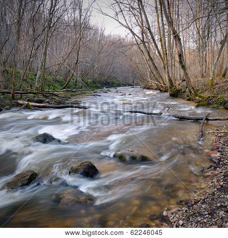 Wild River Landscape In Spring