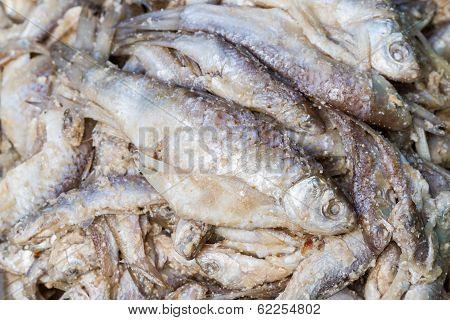 Fermented Fish