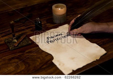 Man Writes On A Parchment Animal Protection