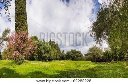 Gardens of Mon Repos in Corfu Greece