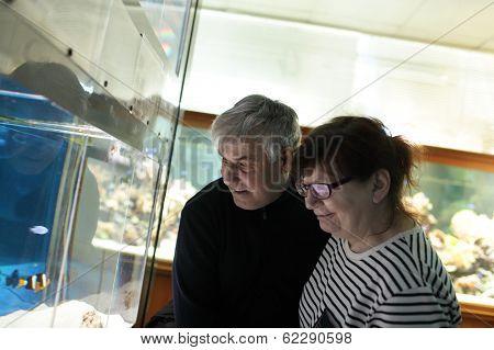 Happy Couple At Oceanarium