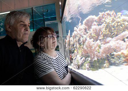 Senior Couple At Oceanarium