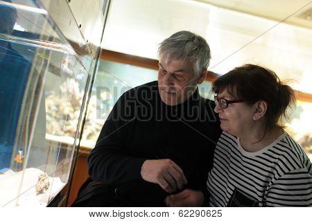 Senior Couple Watching Fishes In Aquarium