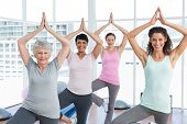 picture of senior class  - Portrait of a smiling trainer with class standing in tree pose at yoga class - JPG