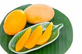 Sweet Yellow Marian Plum  Mango
