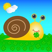 stock photo of auger  - Happy Snail With Shell Eating Green Four Leaf Clover - JPG