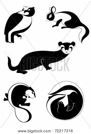 Decor animal illustration
