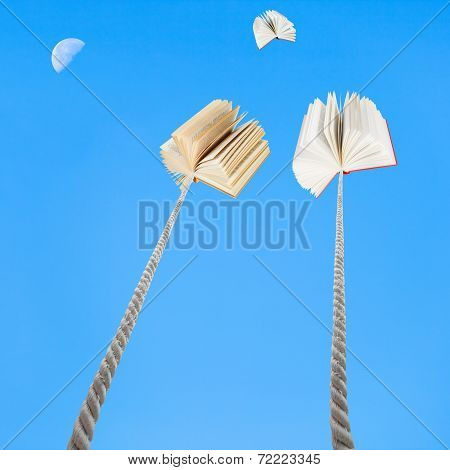 Two Books Tied On Ropes Soars Into Blue Sky