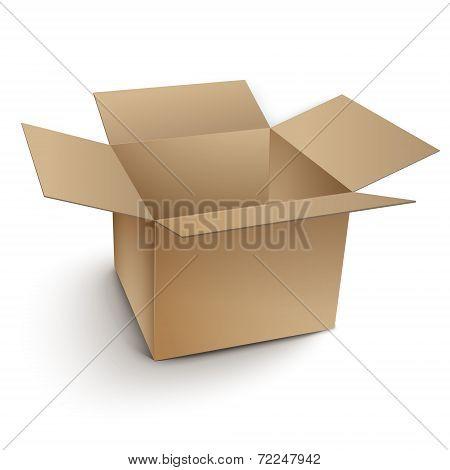 Blank Open Cardboard Box