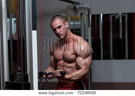 Healthy Young Man Doing Exercise For Biceps