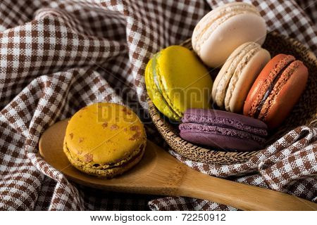 Macaron Or Gerber