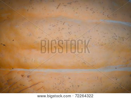Pumpkin Background Texture