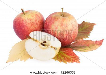Autumn Fruits Apples with leaf isolated on white background