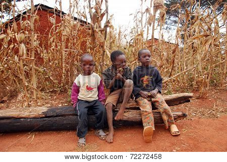 Moments Of The Daily Life Of Children In The Pomerini Village In Tanzania