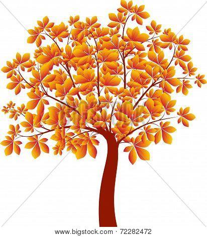 Chectnut Tree, Tree Vector, Fall Tree