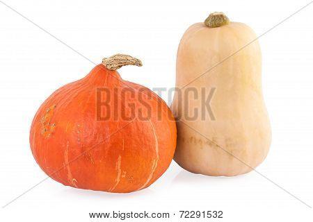 Pumpkin hokkaido and butternut