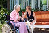 picture of day care center  - Two senior ladies chatting on a garden bench with one sitting in a wheelchair at the end as they enjoy a day outdoors in the shade of a tree  - JPG