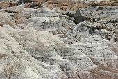 image of petrified  - The arid Petrified Forest National Park of Arizona scattered with petrified wood - JPG
