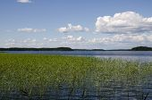 stock photo of backwoods  - Beautiful and clean lakes and forests of Finland - JPG