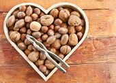 stock photo of hazelnut  - Varitey of nuts like walnuts pecans and hazelnuts - JPG