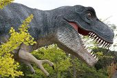 stock photo of tyrannosaurus  - A large scale model of a Tyrannosaurus Rex hunting through a forest