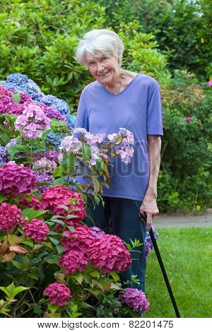 Old Woman With Cane Posing Beside Pretty Flowers