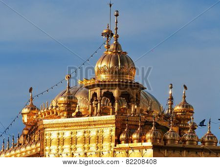 Roof Of Golden Temple In Amritsar. India