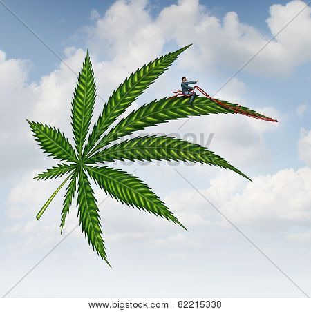 Marijuana Concept