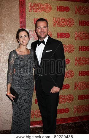 LOS ANGELES - JAN 12:  Chris O'Donnell at the HBO 2014 Golden Globe Party  at Beverly Hilton Hotel on January 12, 2014 in Beverly Hills, CA