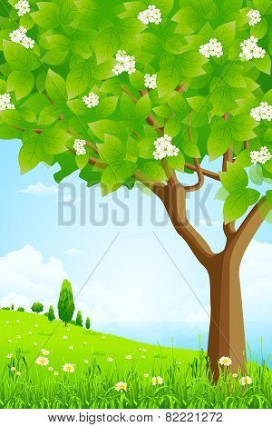 Green Background With Trees And Sea