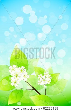 Background With Tree Branch