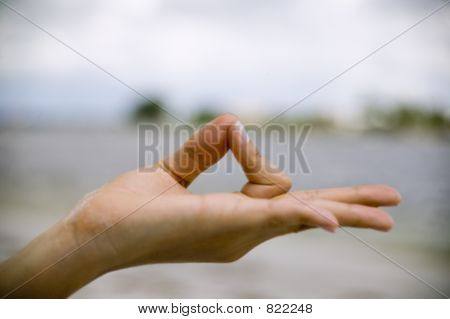 Womans Hand In Youga Pose