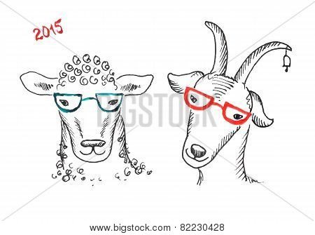 Goat And Sheep With Glasses
