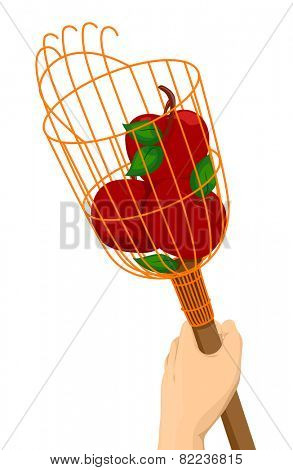 Illustration of a Hand Holding a Fruit Picker With Apples in It