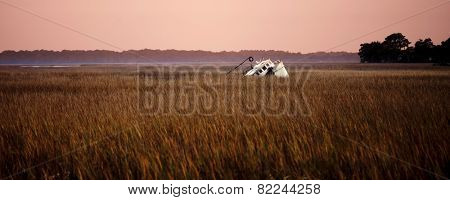 shipwrecked fishing vessel listing in the reeds