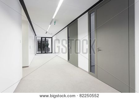 Empty Hall In Business Office