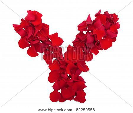 Letter Rose Petals Of Flowers.