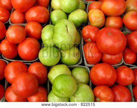 Tomatoes 319