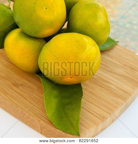 Green-yellow Mandarines Branch