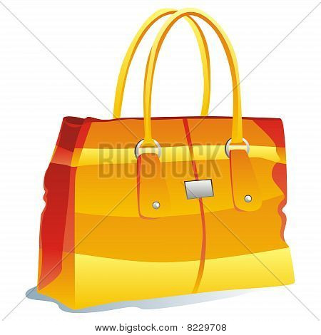 vector illustration of isolated bag