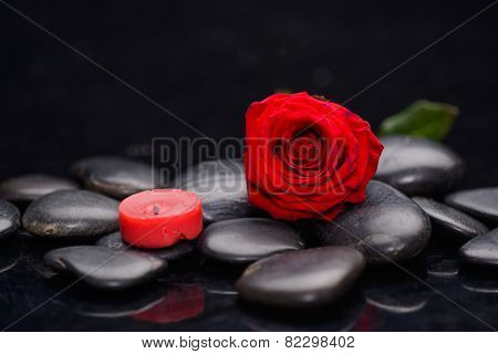 red rose petals with red candle and therapy stones